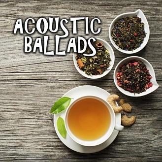 MusicDays - Acoustic Ballads (CD)