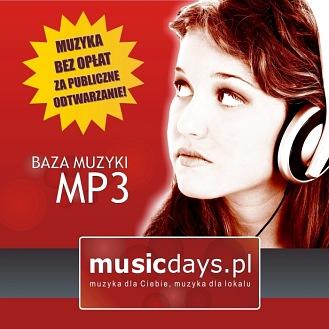Muzyka MP3 - LICENCJA NA 12 MIESIĘCY