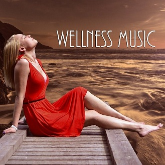 1-PACK: Wellness Music (CD)