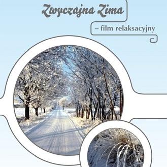 Zwyczajna Zima - Film DVD